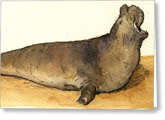 Elephant Seal Greeting Card by Juan  Bosco