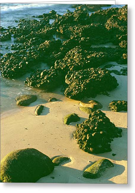 Elevated View Of Rocks On The Beach Greeting Card by Panoramic Images