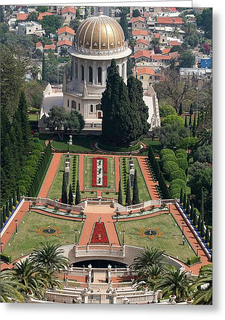 Elevated View Of The Terraces Greeting Card