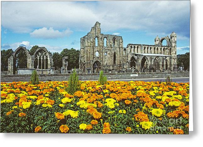 Elgin Cathedral - Scotland Greeting Card
