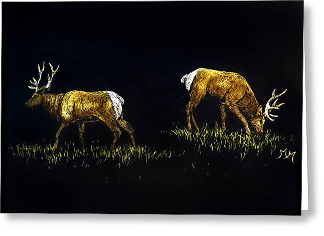 Elk Bulls Greeting Card