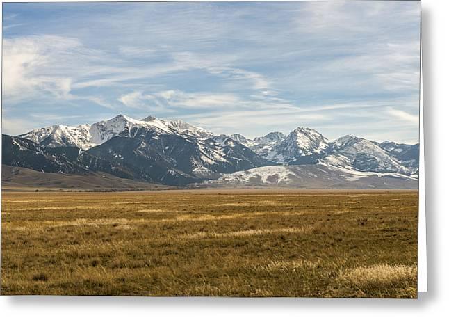 Elk Country Greeting Card by James Dudman