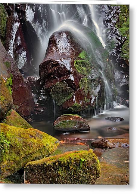 Elk Creek Falls Greeting Card by Leland D Howard