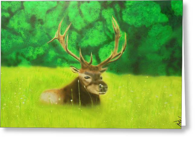 Elk In The Distance Greeting Card by Michael Hall