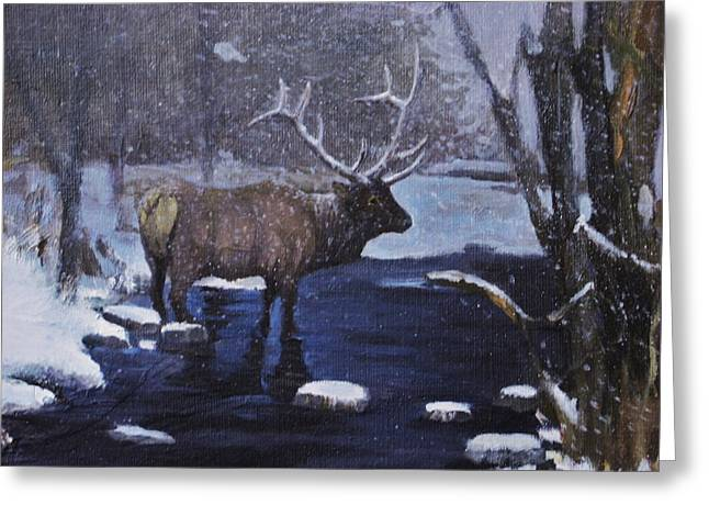 Elk In The Wilderness Greeting Card