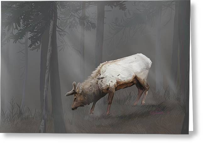 Elk In Velvet Fog Greeting Card
