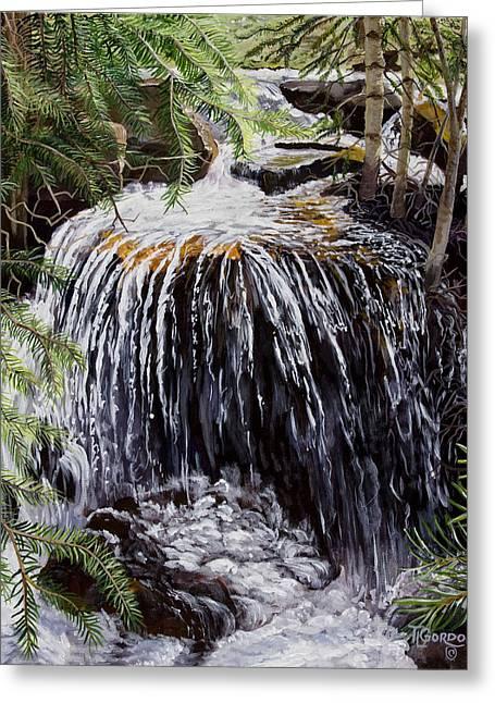 Ellen's Waterfall Greeting Card by Timithy L Gordon