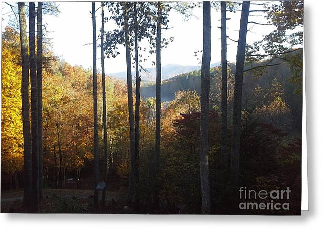 Greeting Card featuring the painting Ellijay Color by Jan Dappen