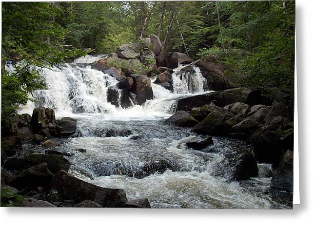 Ellis Falls In Maine Greeting Card by Catherine Gagne