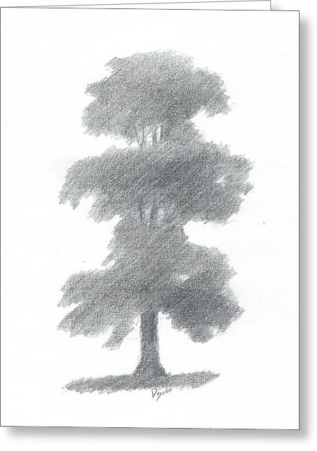 Elm Tree Drawing Number One Greeting Card by Alan Daysh