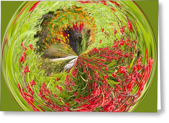 Emberglow Orb Greeting Card by Anne Gilbert