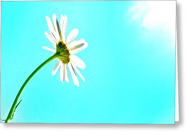 Embrace Greeting Card by Marianna Mills