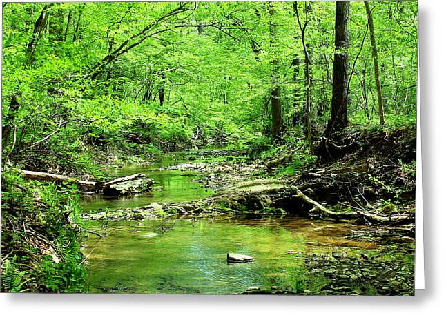 Greeting Card featuring the photograph Emerald Creek by Candice Trimble