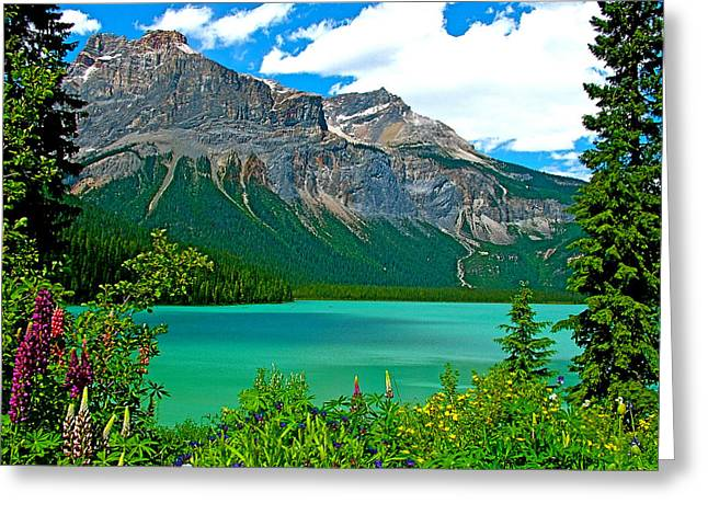 Emerald Lake In Yoho Np-bc Greeting Card