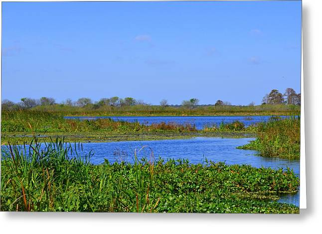 Emeralda Marsh IIi Greeting Card