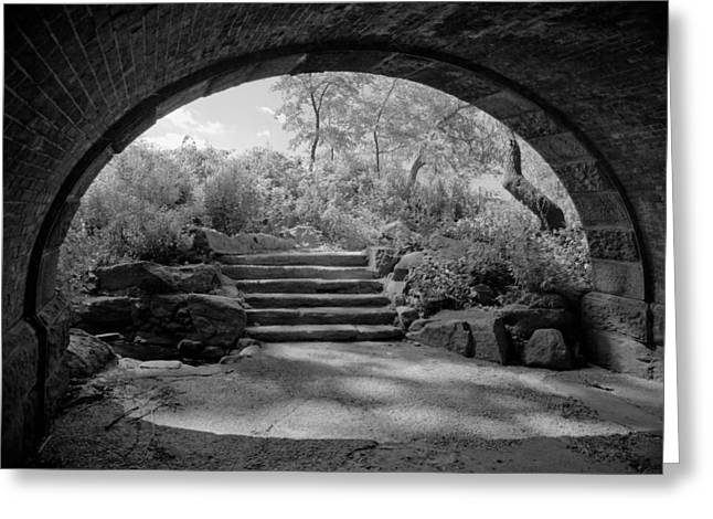 Emergence From Tunnel Greeting Card by Andria Patino