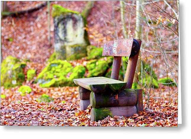 Empty Bench And Autumn Leaves Greeting Card by Wladimir Bulgar