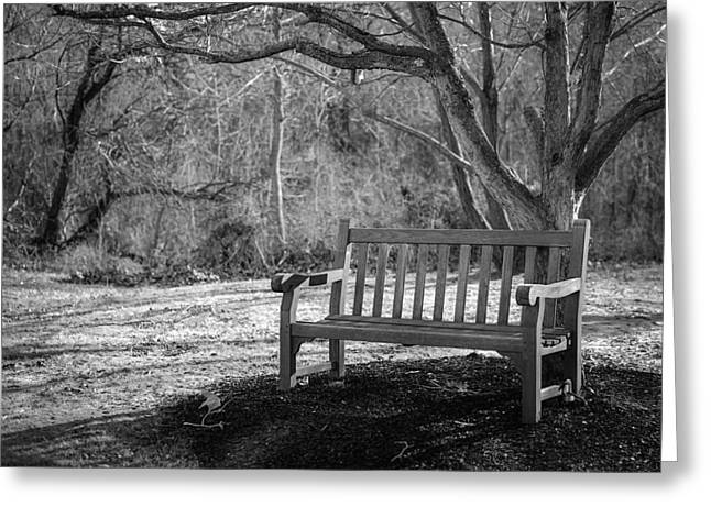 Empty Bench On A Warm Winter Day Greeting Card
