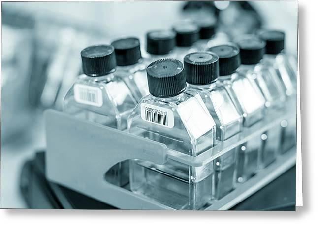 Empty Plastic Bottles In Lab Greeting Card by Wladimir Bulgar