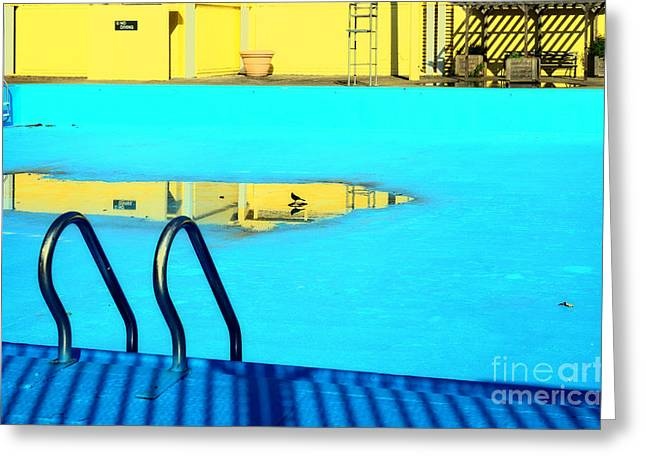Empty Public Swimming Pool Bronx New York City Greeting Card