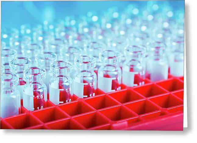Empty Test Tubes In Rack Greeting Card by Wladimir Bulgar