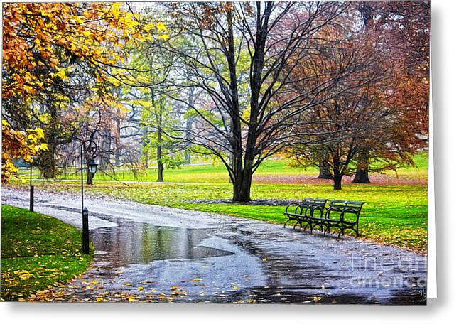 Empty Walkway On A Beautiful Rainy Autumn Day Greeting Card by Nishanth Gopinathan