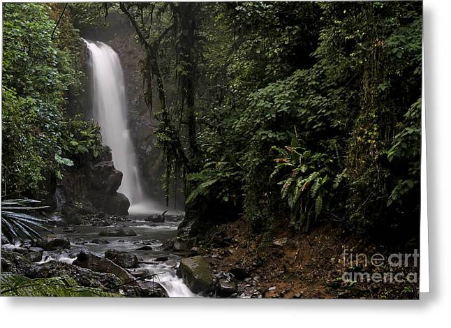Encantada Waterfall Costa Rica Greeting Card by Teresa Zieba