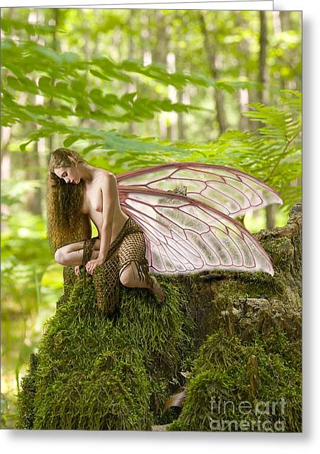 Enchanted Fairy Greeting Card by Tbone Oliver