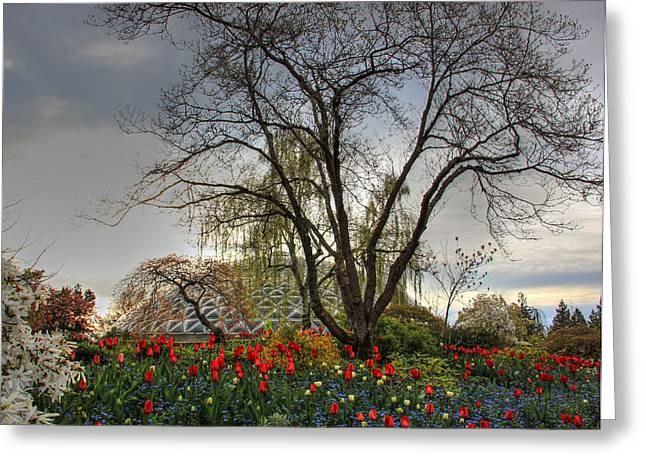 Greeting Card featuring the photograph Enchanted Garden by Eti Reid