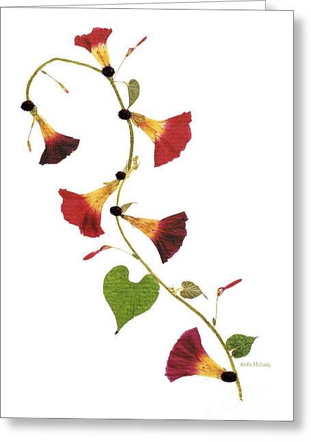 Enchanted Garden Morning Glories Greeting Card