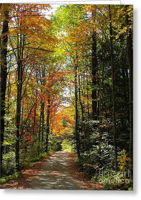 Enchanted Path Greeting Card by Linda Marcille
