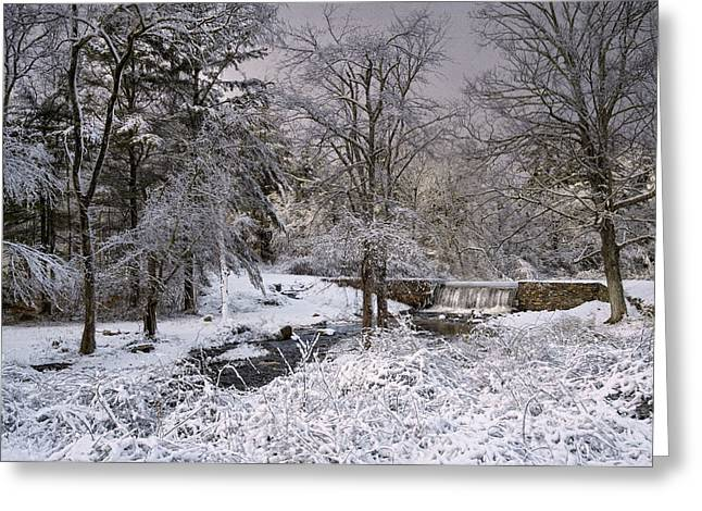 Enchanted Winter Greeting Card by Robin-lee Vieira