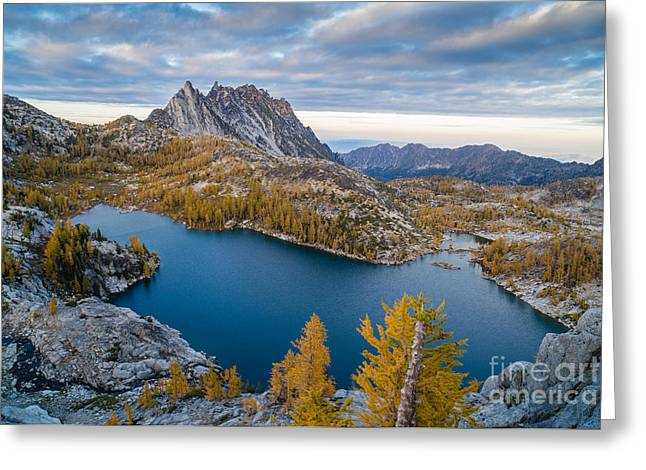 Enchantments Fall Splendor Greeting Card by Mike Reid