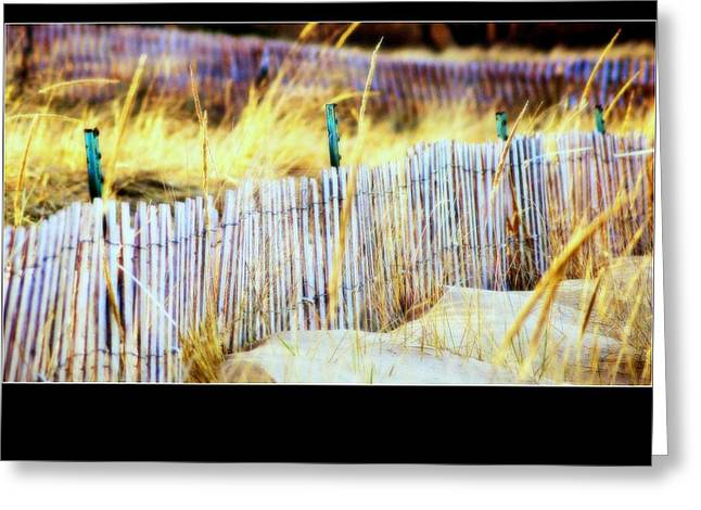 Enclosed Sand Dune Greeting Card by Rosemarie E Seppala