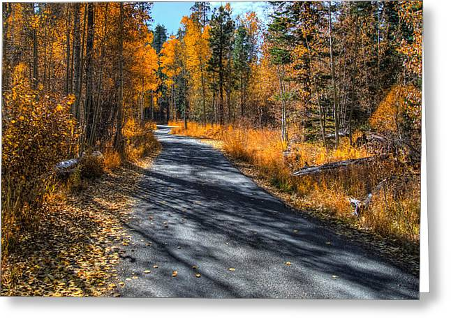 End Of Fall Greeting Card by Mike Ronnebeck