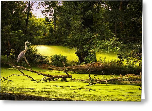 End Of Path Merged Image Greeting Card by Thomas Woolworth