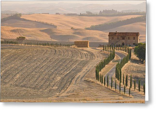 End Of Season In Tuscany Greeting Card