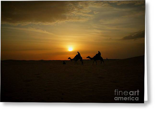 End Of The Day In Sahara Greeting Card