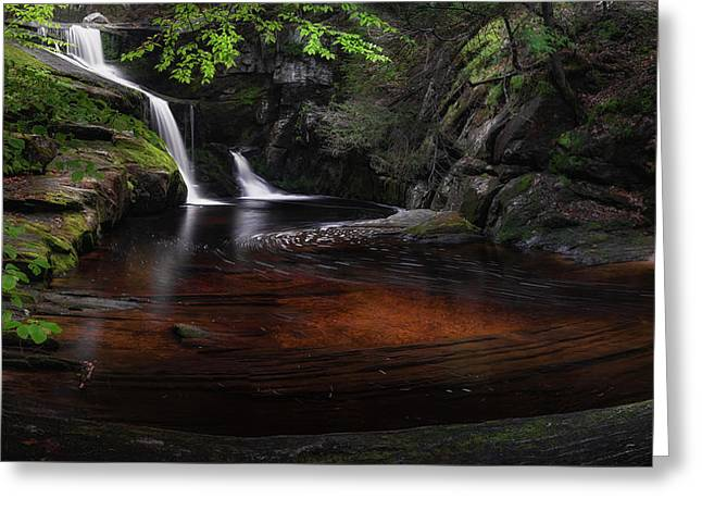 Enders Falls Spring Greeting Card by Bill Wakeley