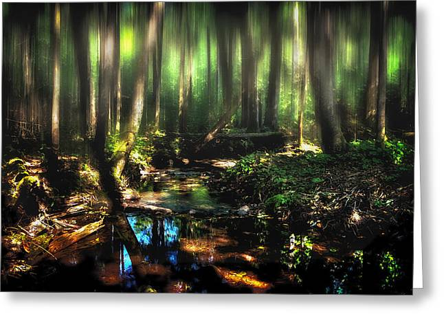 Endless Forest Greeting Card