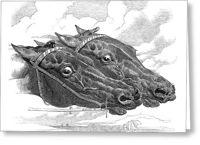 England Horse Race, 1849 Greeting Card