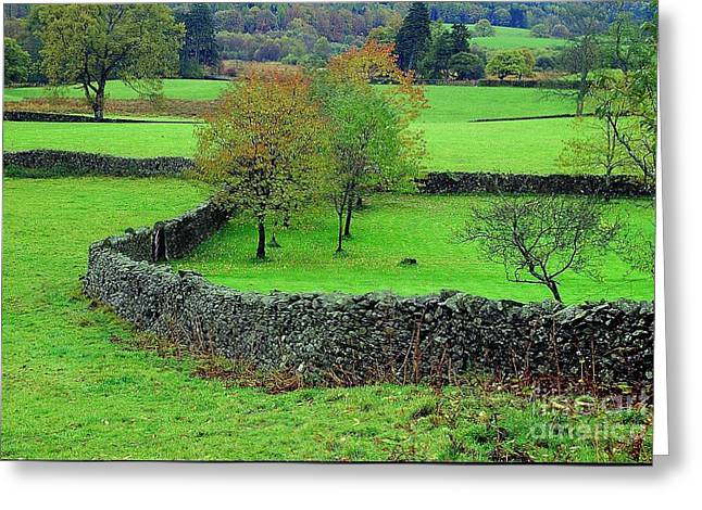Greeting Card featuring the photograph English Autumn by Ranjini Kandasamy