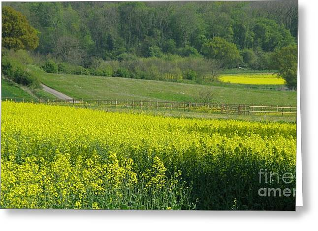 English Countryside Greeting Card by Ann Horn
