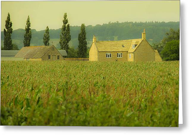 English Countryside Greeting Card by Marie  Cardona