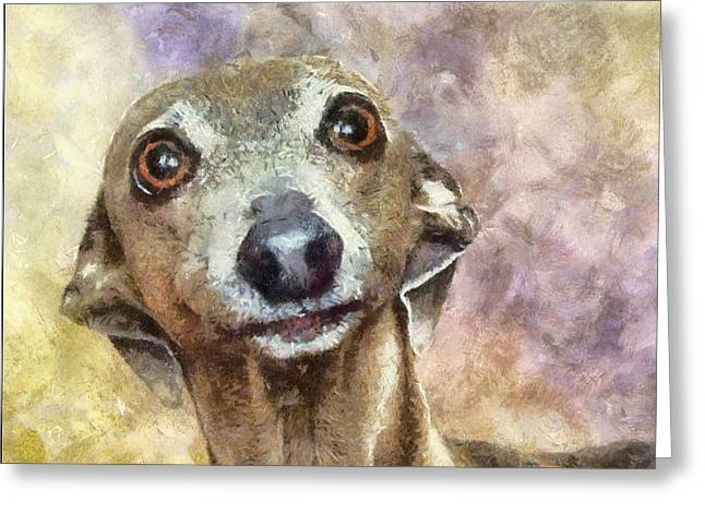 Greeting Card featuring the painting English Hound Hunting Dog by Georgi Dimitrov