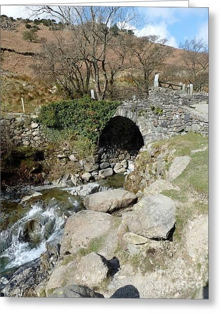 English Lakes And Waterfalls Greeting Card by Julie Koretz