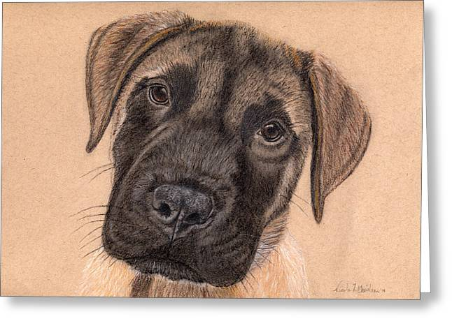 English Mastiff Puppy Greeting Card by Nicole I Hamilton