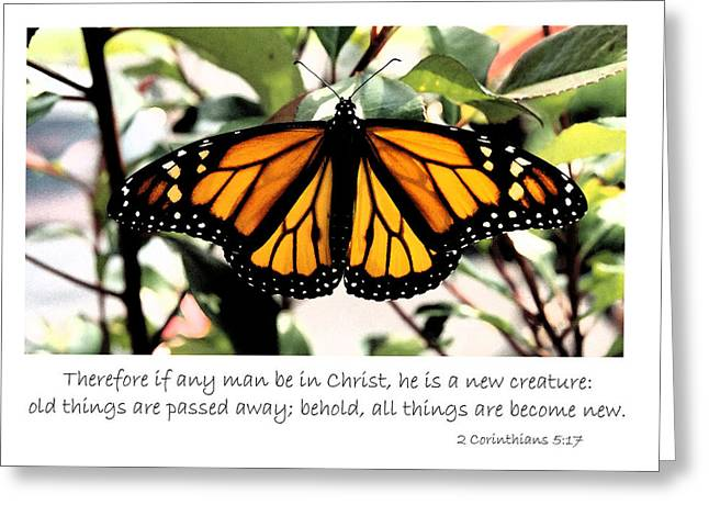 English New Creature In Christ Greeting Card