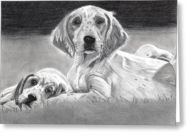English Setter Puppies Dog Greeting Card by Olde Time  Mercantile