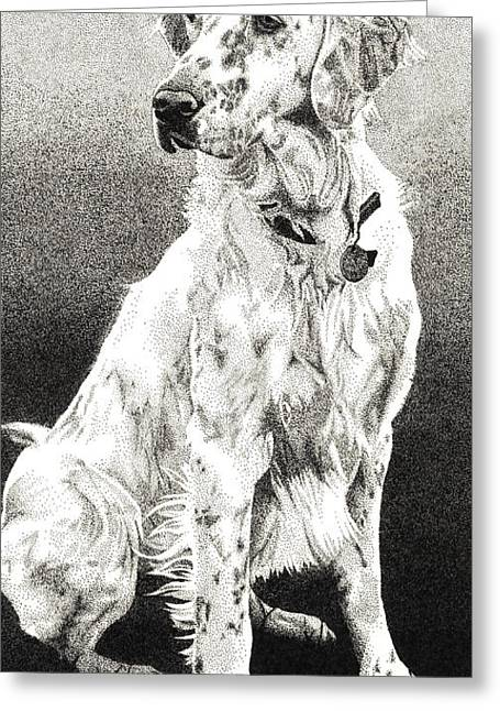English Setter Greeting Card by Rob Christensen